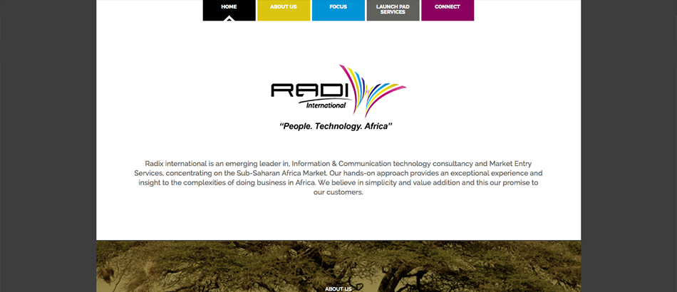 Radix International